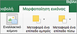 """Κουμπί """"Εναλλακτικό κείμενο"""" για εικόνες στην κορδέλα στο Excel για Mac"""