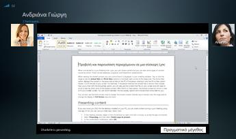 """Στιγμιότυπο οθόνης μιας περιόδου λειτουργίας κοινής χρήσης προγράμματος με εμφάνιση της επιλογής """"Πραγματικό μέγεθος"""""""