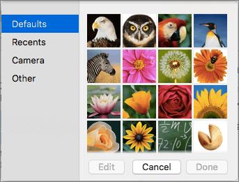 Επιλογές εικόνας επαφής του Outlook