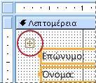 Ένας δείκτης επιλογής διατάξεων σε μια φόρμα σε προβολή σχεδίασης