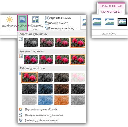 Ανοικτό μενού του κουμπιού Χρώμα από την καρτέλα Μορφοποίηση εργαλείων εικόνας