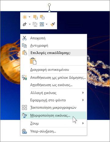 """Στιγμιότυπο οθόνης των επιλογών """"Μορφοποίηση εικόνας"""" στον Publisher."""