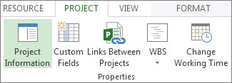 Project Information button image