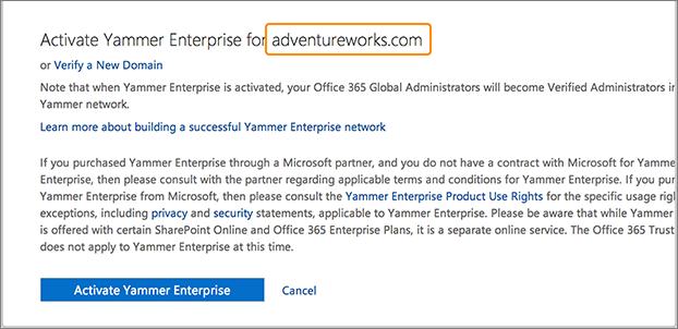 Screenshot showing the company domain name