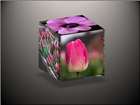 Custom animation effects: 3-D cube with six pictures