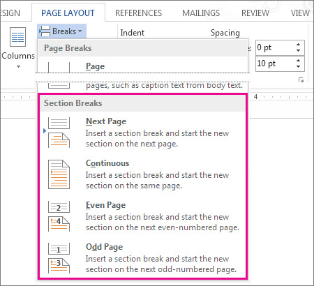 The different section breaks you can add to your document