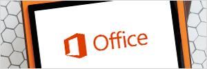 oss_OfficeLogoImageAccessibilityPage