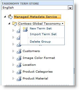 Use the menu to create a new term set.