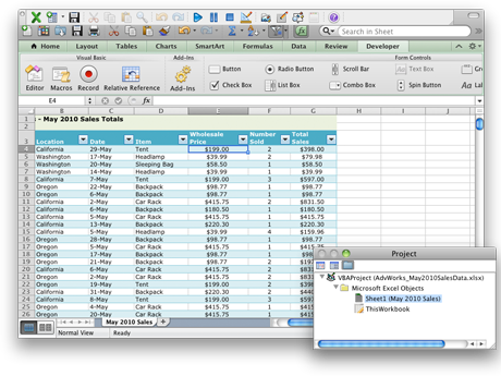 Worksheet showing the Developer tab and Project window