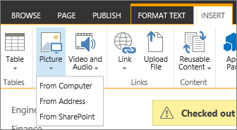 The Insert Picture button with the source options menu below it.
