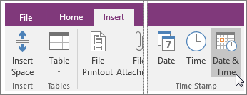 Screenshot of the Date and Time button in OneNote 2016.