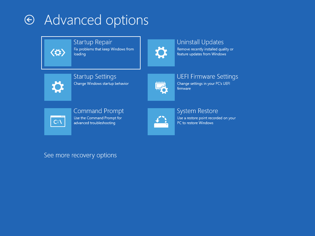 """Shows the """"Advanced options"""" screen with """"Startup repair"""" selected."""