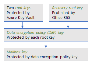 This graphic shows the hierarchy of keys used in Customer Key for Exchange Online
