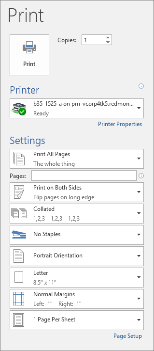 Screenshot of the Print pane with the various print settings, such as number of copies.
