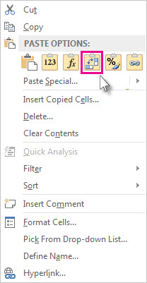 Paste Options menu