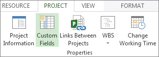 Custom fields command on the Project tab