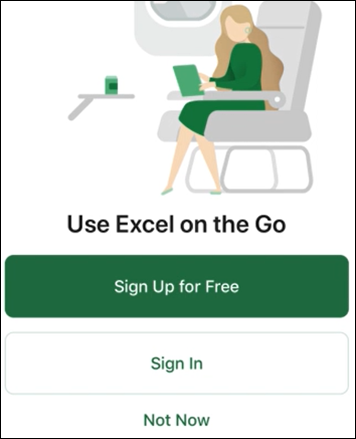 Use Excel on the Go