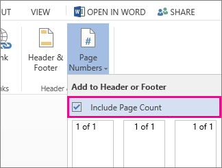 Image of the check box to select to include the page count with the page numbers in a doc (page X of Y).