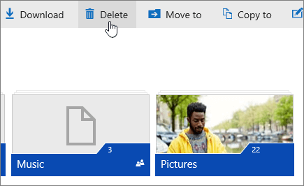A screenshot showing the Delete button on OneDrive.com.