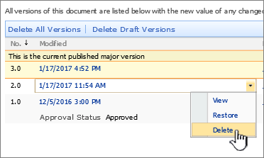 Versioning dropdown on a file with the delete option highlighted
