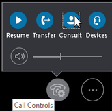 Call Controls window showing the Consult button