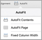 iPad AutoFit options