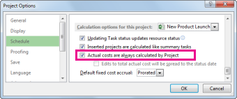 Schedule tab in the Project Options dialog box