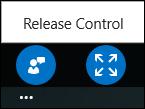 Screen shot of release control