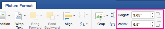 Picture Format tab with Height and Width boxes highlighted.