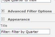 Enter Filter: Filter by Quarter in the Title box.