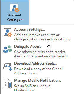 Options available when you choose account settings in Outlook