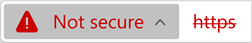Icon for a website with an invalid certificate