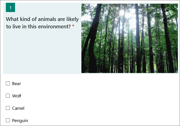 Image of a forest displayed next to a question