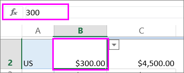 View of a number value in the function bar