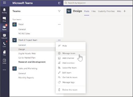 Select Manage team option