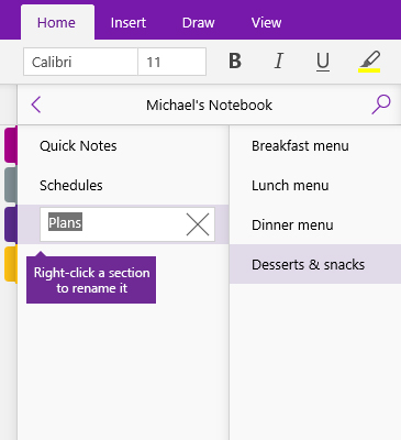 Screenshot of a section being renamed in OneNote