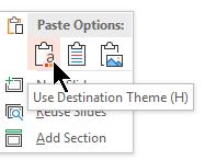 Under Paste Options, select the first option, Use Destination Theme