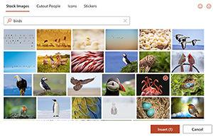 Stock Images box showing a variety of photos.