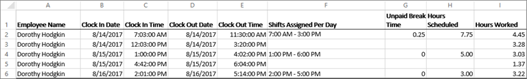 Sample Time Clock data for an employee