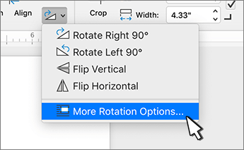 More rotation options menu item