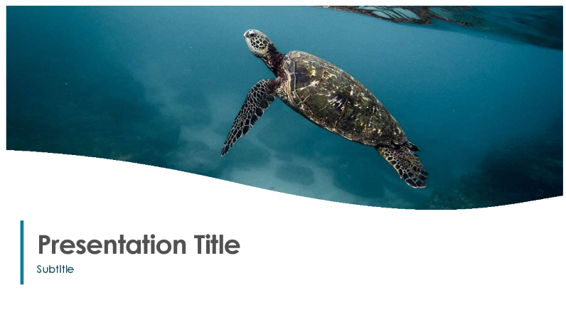 photo of a presentation about the ocean