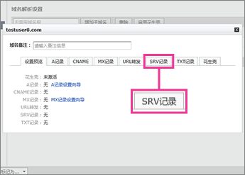 """Click """"SRV记录"""""""