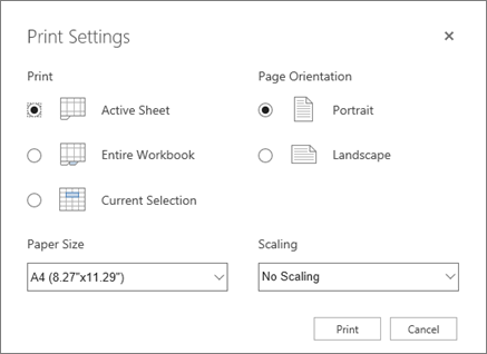 Print settings options after clicking File > Print
