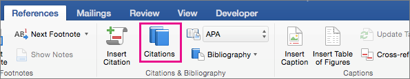 On the References tab, Citations is highlighted.