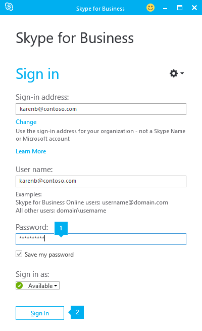 The Skype for Business sign-in screen, with callouts pointing to the password field and the Sign In button.