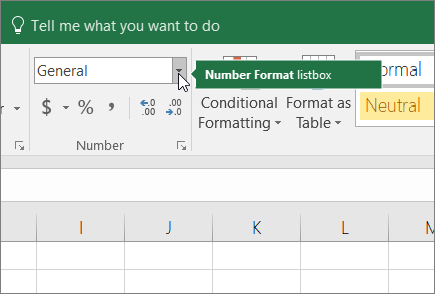 Number Format list box