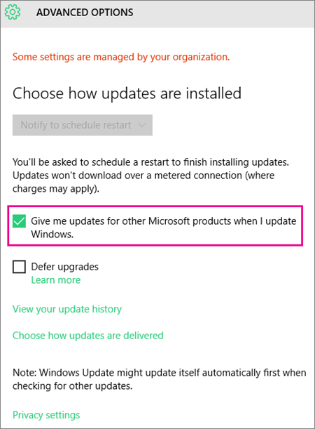 Windows Update Advanced options