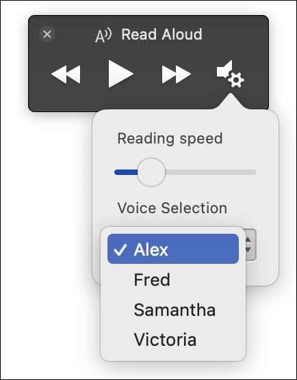 Four voice selection options displayed for Immersive Reader Read Aloud feature