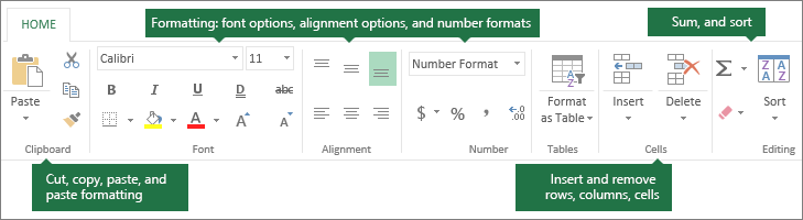 Home tab with cut, copy, paste, paste formatting buttons; formatting options like font, alignment, and number formats; Inserting rows/columns; Sum and sort