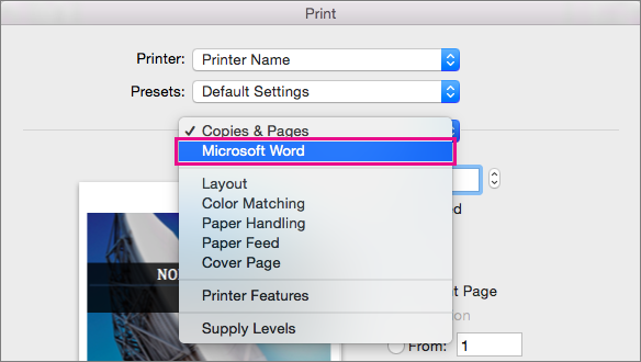 In the Print dialog box, select Microsoft Word to configure more settings for printing.
